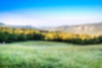 View Campo Mare