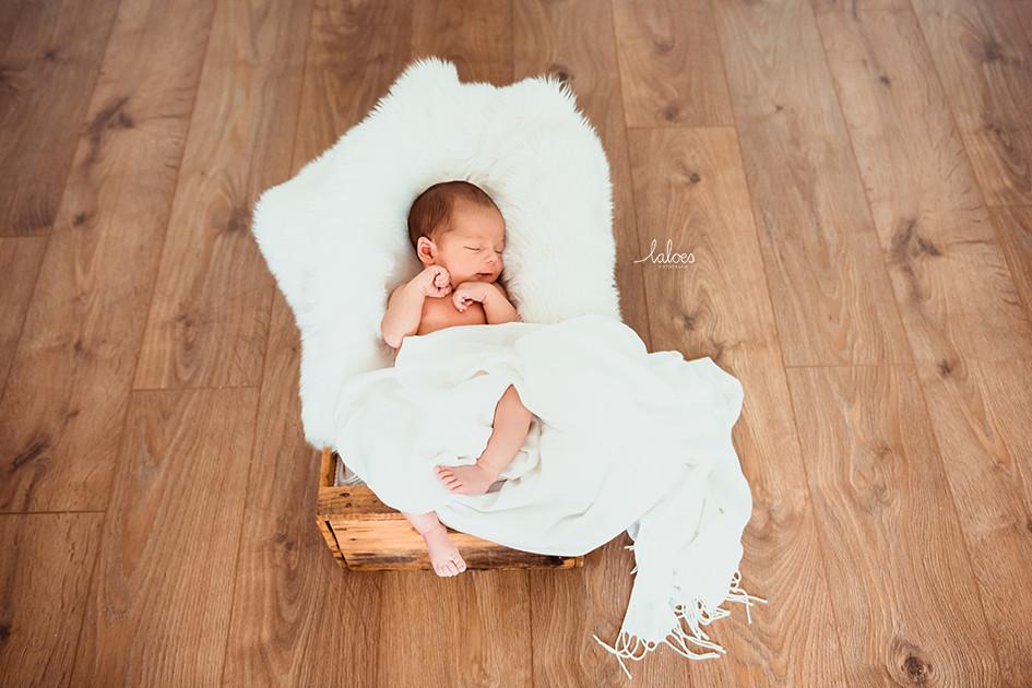 Newbornfotografie Rotterdam