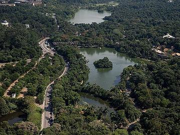 Zoológico de São Paulo.jpg
