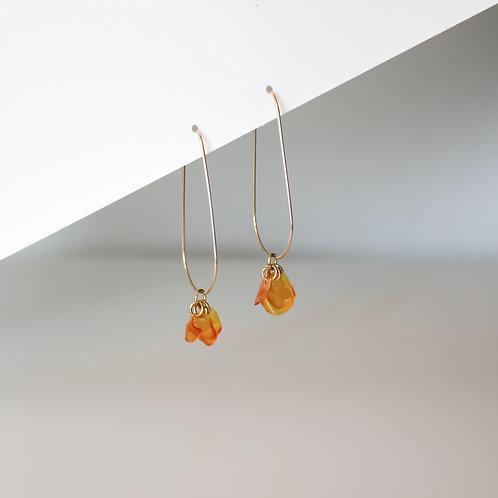 Ginevra Orange Drops