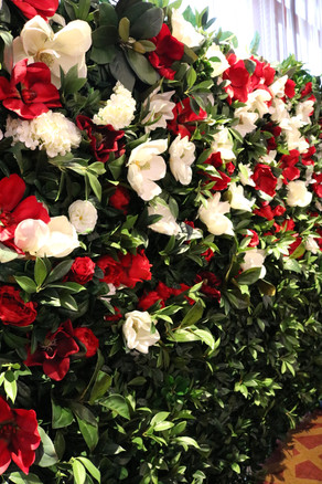 Red Magnolia Wall