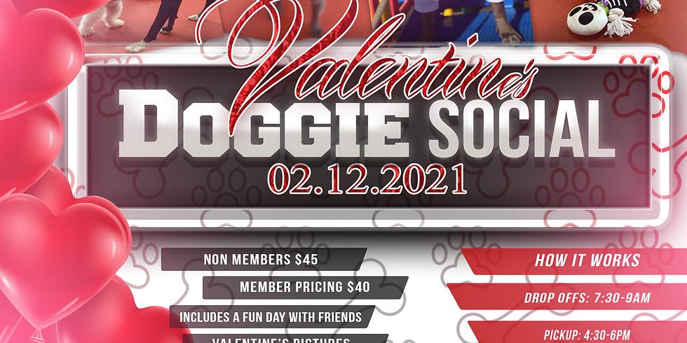 Valentine's Doggie Social