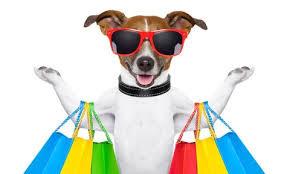 Pet Friendly Stores