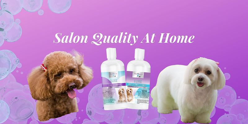 Salon Quality At Home (4).jpg