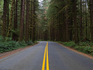 5 tips para viajar por carretera (II parte)