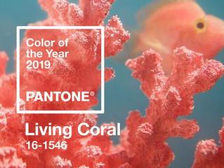 Living Coral- Cor Pantone 2019