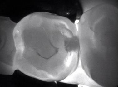 Richland Dentist