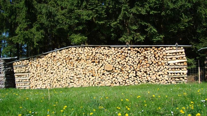 Brennholz / Wald