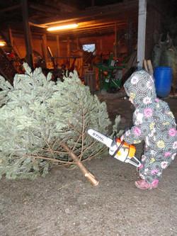 Alexia beim Baumzuschnitt