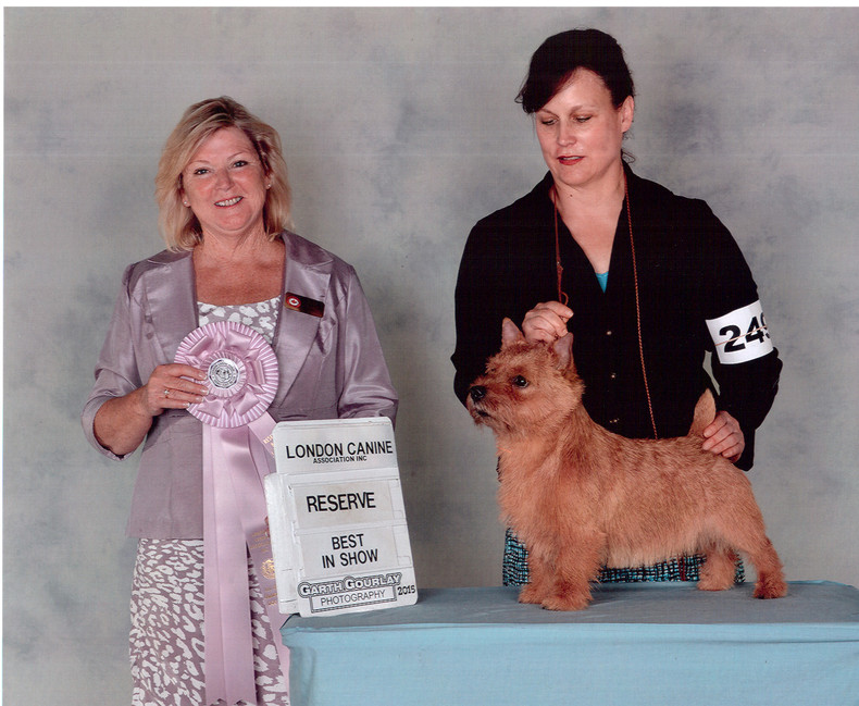 Curby Reserve best in Show.jpg