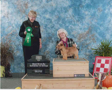 Best Bred by exhibitor in group.jpg