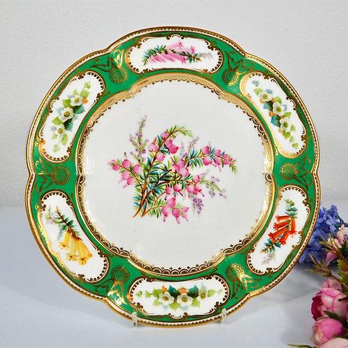 Coalport Botanical dessert plate