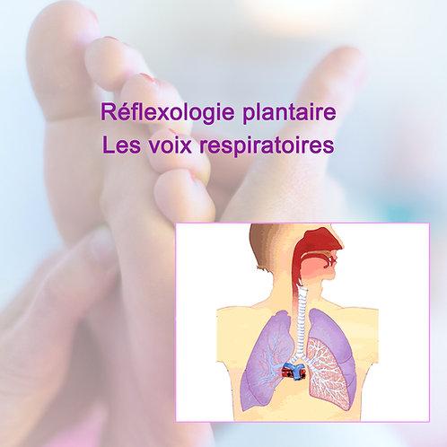 Réflexologie Plantaire Voies respiratoires
