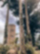 unnamed-10.jpg