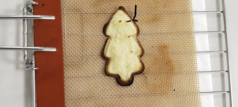 potato tree