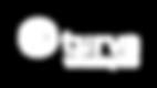 Turva_vakuutusyhtio_logo_valkoinen.png