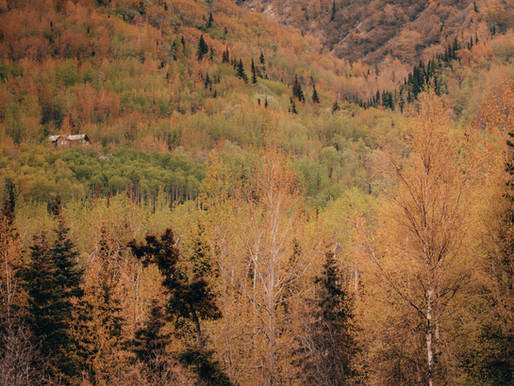 Top 10 Anchorage Photo Ops