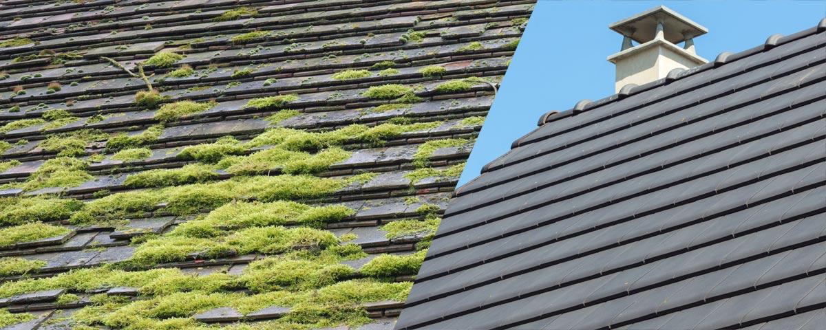 Demoussage toiture - L'Atelier des Energ