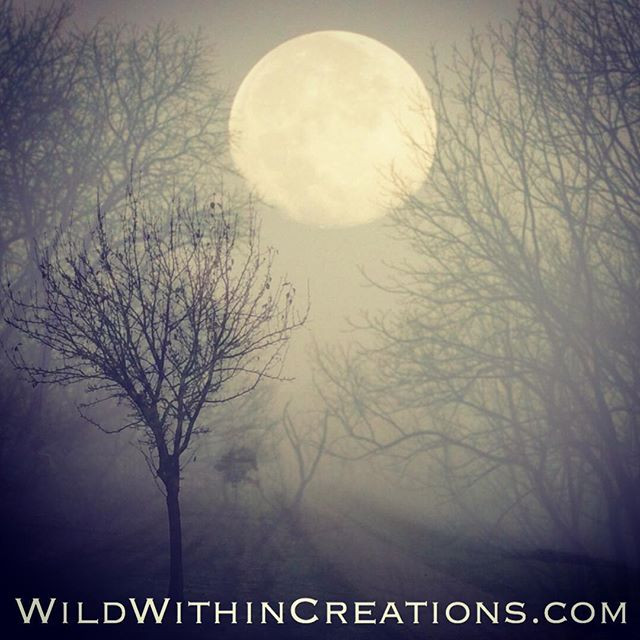 Full Moon during Winter Solstice - Lauralee - Thomson - Women - Rituals - Melbourne