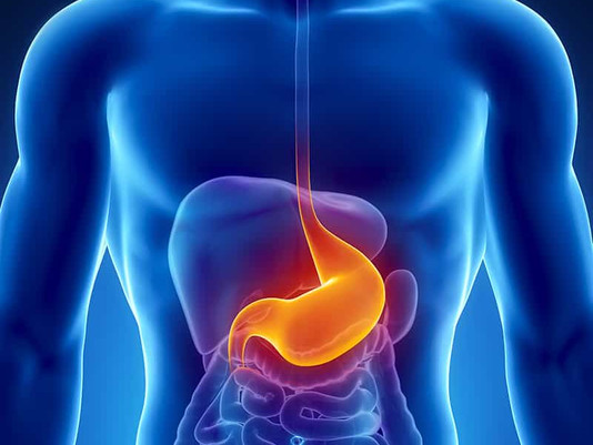 Health Problems caused due to low mineral water from RO. : Gastric disorders