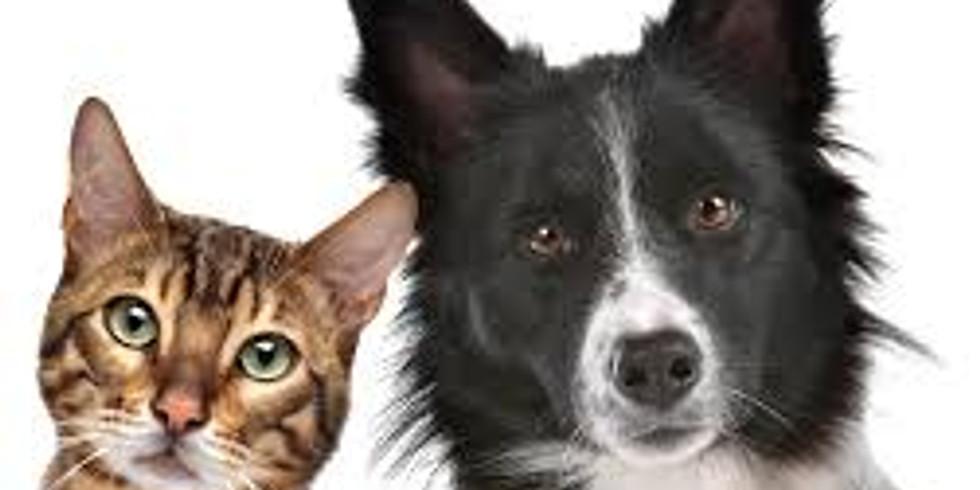 Pet Wellness Expo (St Catharines, ON)