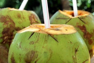 Going Coconuts?