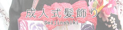 seijin_bn.png