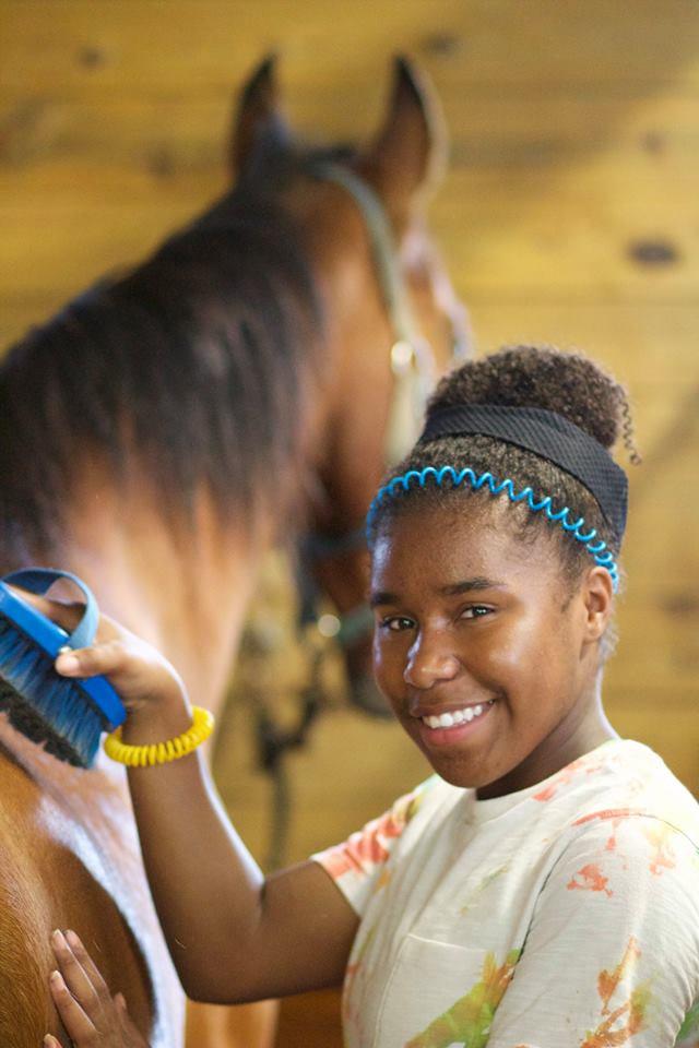 School Horse Lesson