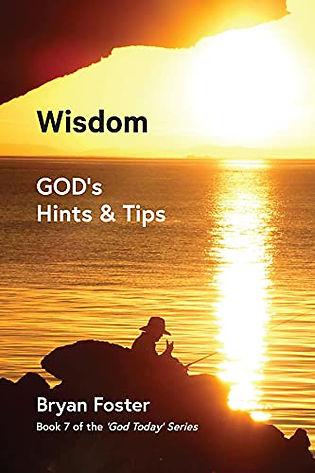 41+fzSS450S Wisdom Amazon cover.jpg