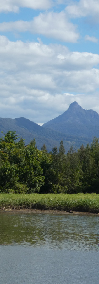 Mt_Warning_from_NE_©_Copyright_2018_Brya