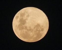 Moon_©_Copyright_2018_Bryan_W_Foster.JPG