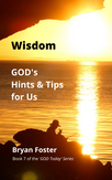 'Wisdom: GOD's Hints and Tips' (2021) by Bryan Foster