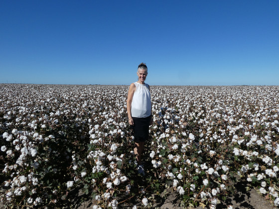 Goondiwindi Cotton - Example in Excellence for Sustainable Irrigation