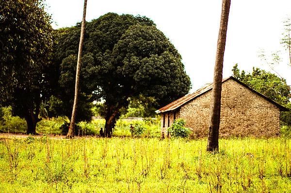 Gezaulole village house!