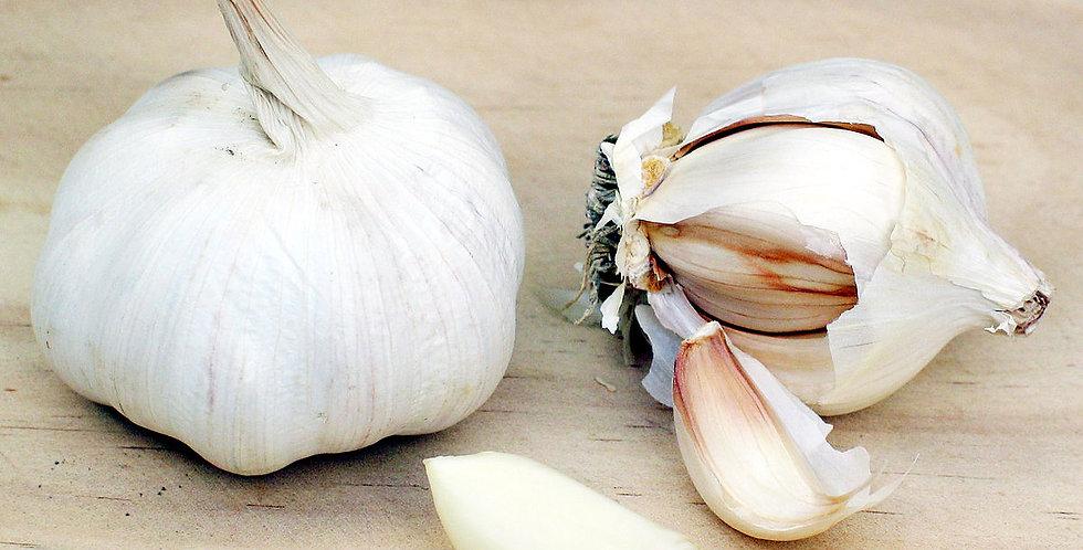 Garlic (Artichoke)