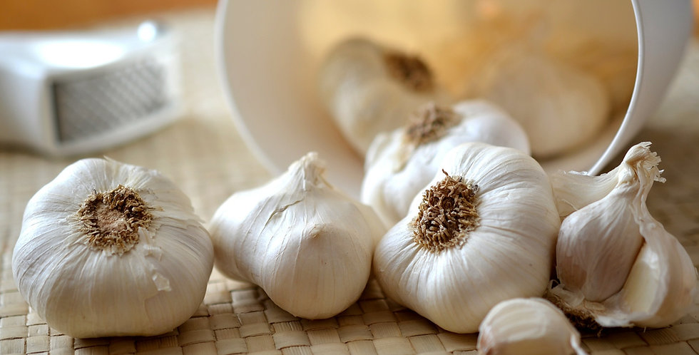 Garlic (Music)