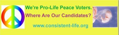 Election bumper sticker