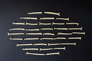Divination Bones.jpeg