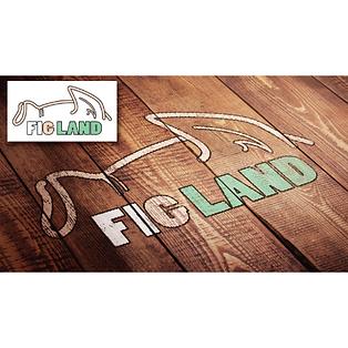 피그랜드-목업-정사각버젼.png