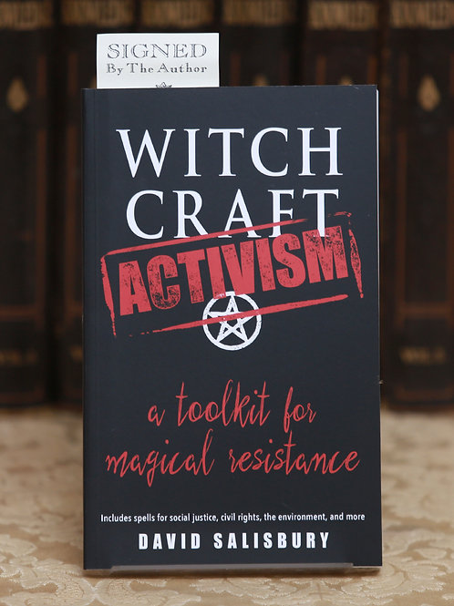 Witchcraft Activism - David Salisbury