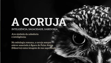 4 a coruja.png