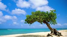 RITZ CARLTON ARUBA COLUMBIAN INCENTIVE TRIP MAY 2019