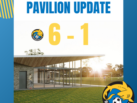 The Votes Are In! Pavilion Update Match Report