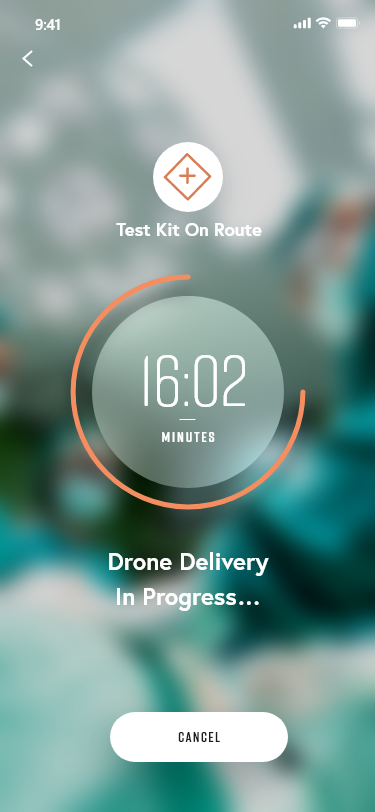 Drone Delivery In Progress.png