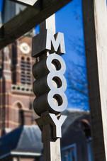 MOOOY-09.jpg