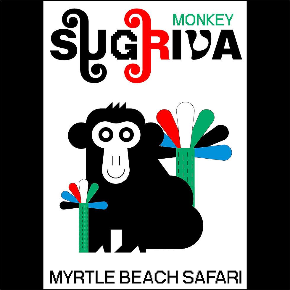 Myrtle_Beach_ Safari_v2_2.jpg