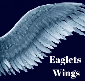 Eaglets Wings.png