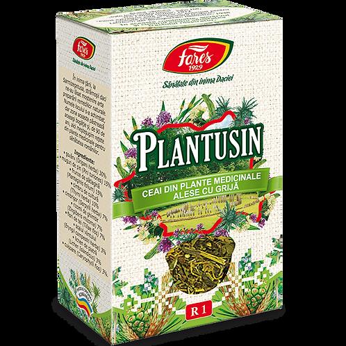 Plantusin, ceai la punga, 50 g