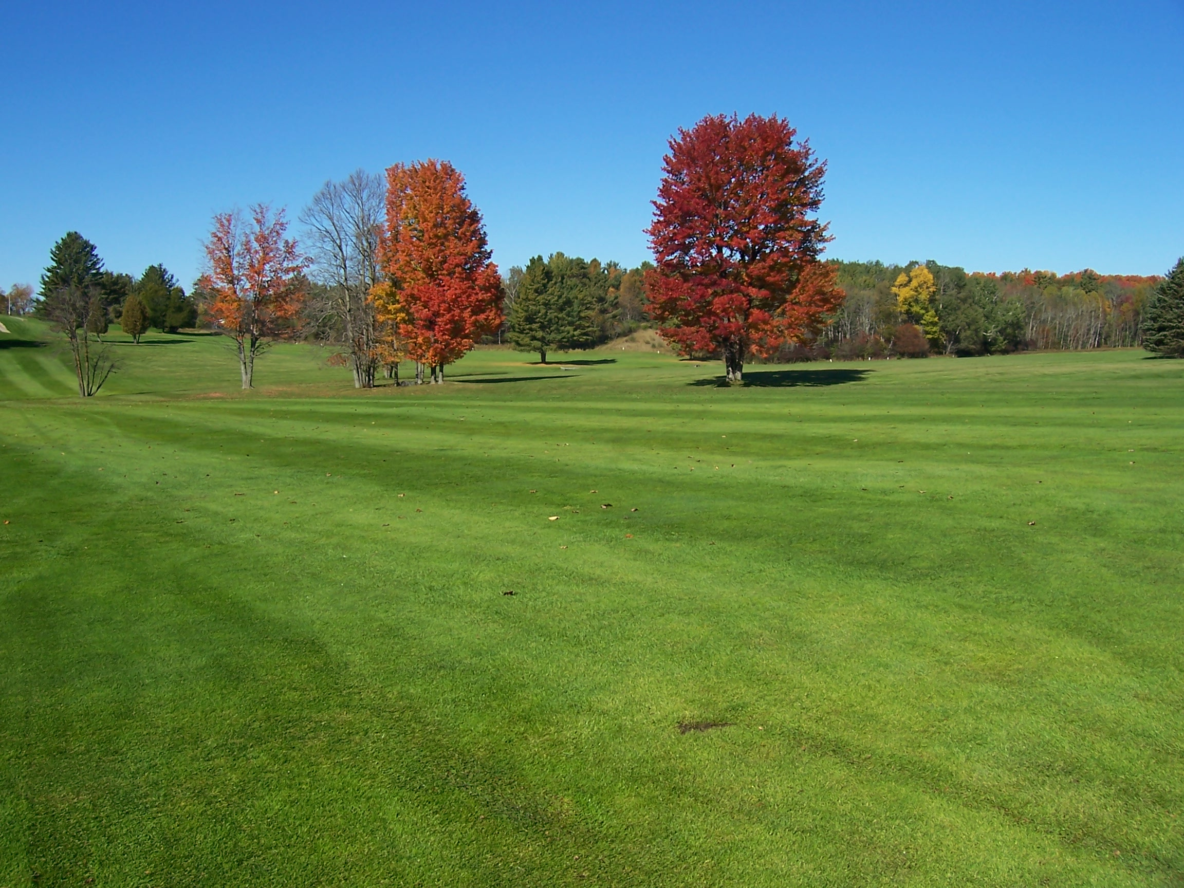 SVGC #7 to #8 Fairways.jpg