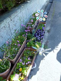 lovely pinwheel